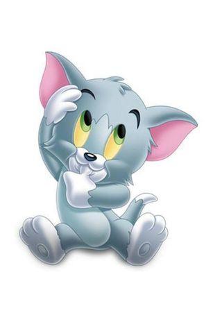 Обои на телефон том, малыш, кошки, cat tom, baby cat tom