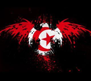 Обои на телефон арабские, флаг, tunisia
