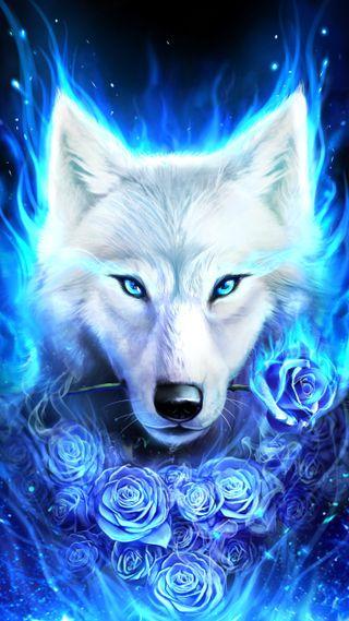 Обои на телефон волк, белые, галактика, lobo de luz, galaxy