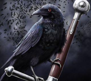 Обои на телефон черные, темные, птицы, меч, клинок, ворона, ворон, война, бой, raven and sword