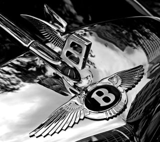 Обои на телефон значок, феррари, машины, логотипы, ламборгини, капюшон, знаки, бмв, ауди, lamborghini, ferrari, bmw, bentely badge hood, bentely, audi