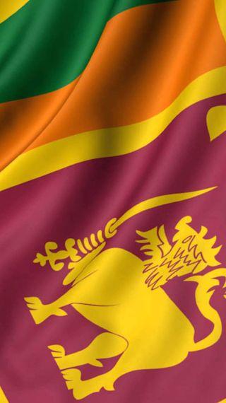 Обои на телефон шри ланка, крикет, флаг, лев, srilanka flag, lankan, ceylon