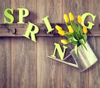 Обои на телефон тюльпаны, цветы, время, весна, букет, spring time