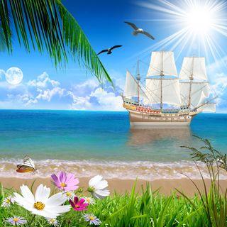 Обои на телефон корабли, цветы, трава, солнце, птицы, пляж, небо, море, луна, дерево, вид, beach view hd