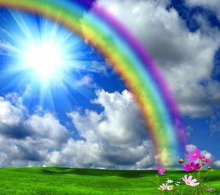Обои на телефон солнечный свет, цветы, радуга, луг, дождь, весна, after the rain