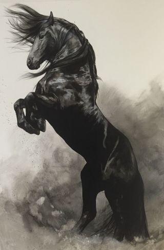 Обои на телефон 4k, hd, black horse, черные, красота, удивительные, дикие, лошадь, лошади, удар