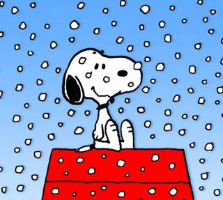 Обои на телефон снупи, собаки, снег, мультфильмы, коричневые, зима, peanuts, charlie