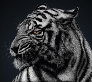Обои на телефон черные, тигр, дикая природа, белые, арт, black n white, art, 1440x1280