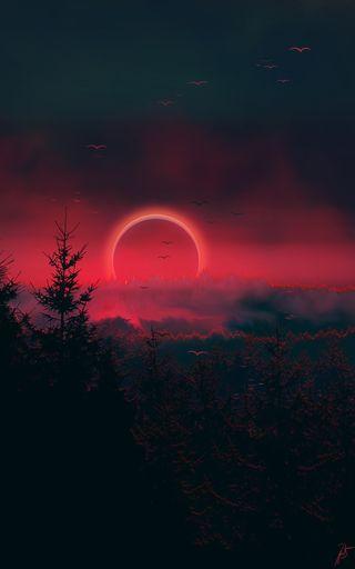 Обои на телефон aura, природа, закат, облака, лес, деревья, магия, птицы, восход, аврора