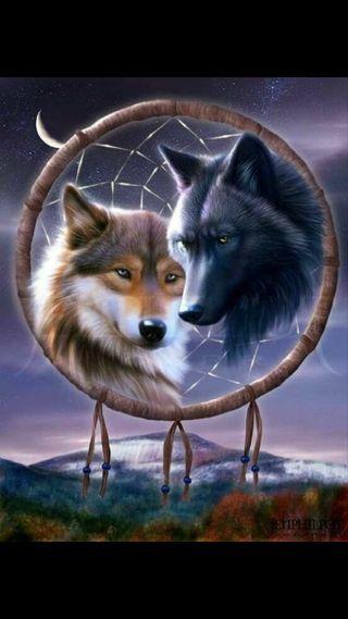 Обои на телефон мечта, ловец, волк