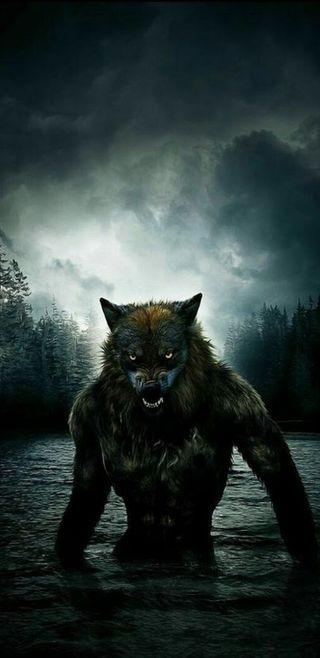 Обои на телефон фантазия, оборотень, злые, животные, волк, note 8, lycan