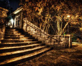 Обои на телефон тень, темные, парк, огни, ночь, лестница, деревья, 3д, 3d
