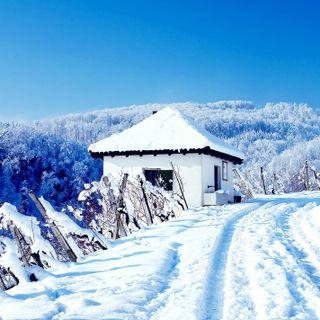 Обои на телефон премиум, снег, природа, лучшие, крутые, белые, hd, 4k, 2014, 1080p