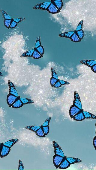 Обои на телефон buterfly, синие, эстетические