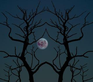 Обои на телефон ужасные, хэллоуин, луна, деревья, spooky trees