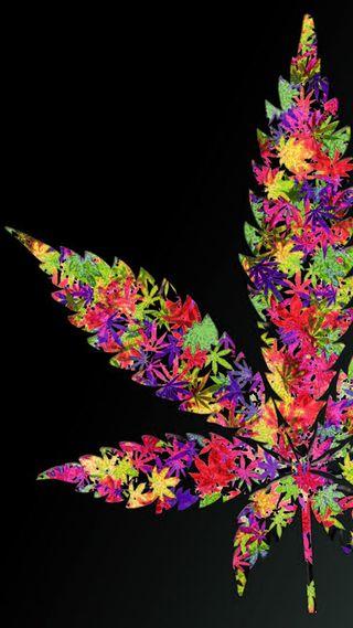 Обои на телефон цветные, листья, красочные, дым