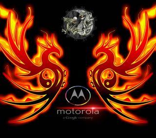 Обои на телефон янь, огонь, моторола, мото, дракон, абстрактные, yingmoto, ying, motorola, dragon