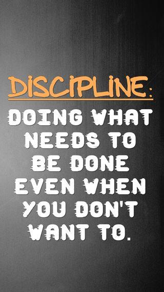 Обои на телефон цитата, поговорка, новый, крутые, знаки, want, needs, live, do, discipline