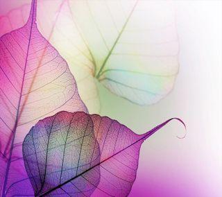 Обои на телефон листья, дизайн, micro, leaf hd