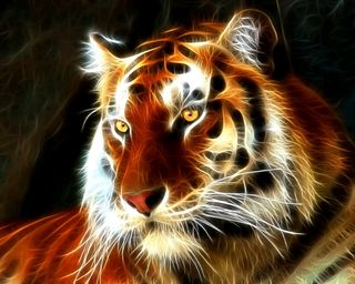 Обои на телефон фрактал, тигр