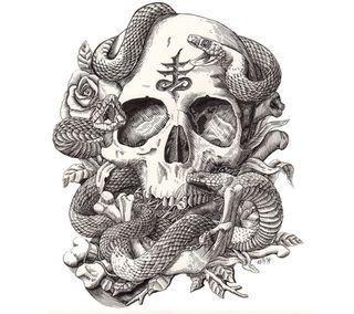 Обои на телефон змея, череп, розы, дизайн, арт, vivora, rosas, art