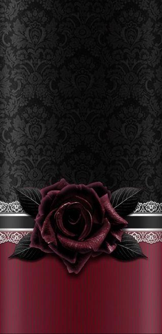 Обои на телефон готические, черные, розы, винтаж, laced, gothic rose