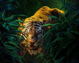 Обои на телефон книга, джунгли, the jungle book, shere khan