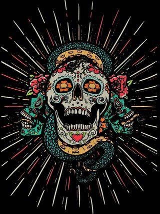 Обои на телефон мексиканские, змея, череп, hd