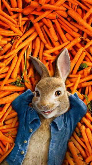 Обои на телефон кролики, фильмы, питер, анимация, peter rabbit 2018, childrens