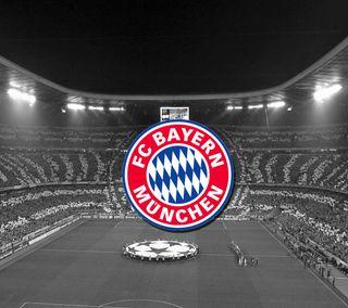 Обои на телефон футбольные клубы, футбольные, футбол, бавария, robben, munchen, fcbayern, fc bayern munich