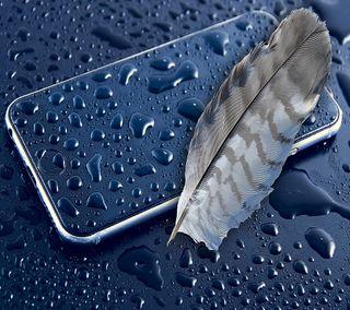 Обои на телефон мокрые, синие, перо, капли, дождь