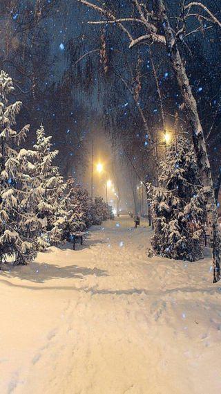 Обои на телефон снег, рождество, ночь, зима, plus, fairies