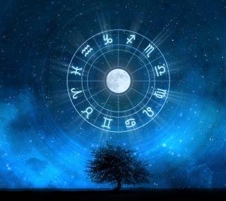 Обои на телефон зодиак, дерево, astrology