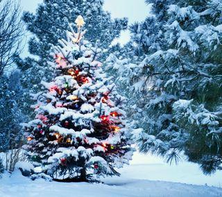 Обои на телефон счастливое, лес, снег, рождество, зима, дерево