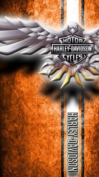 Обои на телефон прайд, черные, харли, оранжевые, мотоциклы, любовь, девушки, love, harley pride