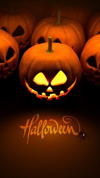 Обои на телефон halloween pumpkins, jack o lanterns, хэллоуин, джек, тыква