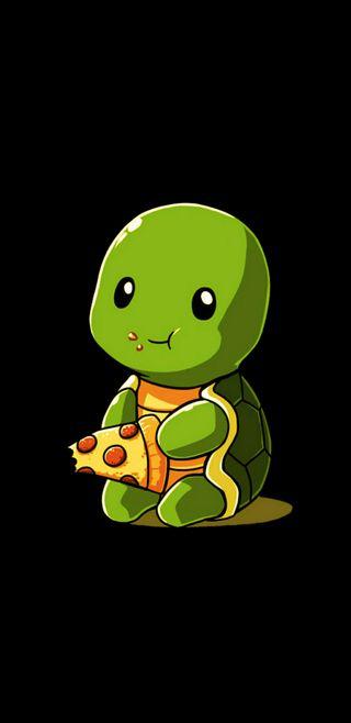 Обои на телефон черепашки ниндзя, черепаха, раковина, пицца