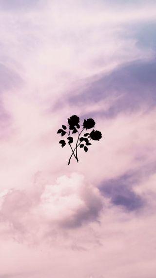 Обои на телефон эстетические, черные, розовые, облака