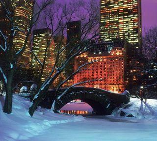 Обои на телефон нью йорк, парк, новый, манхэттен, йорк, зима, new york winter, central park