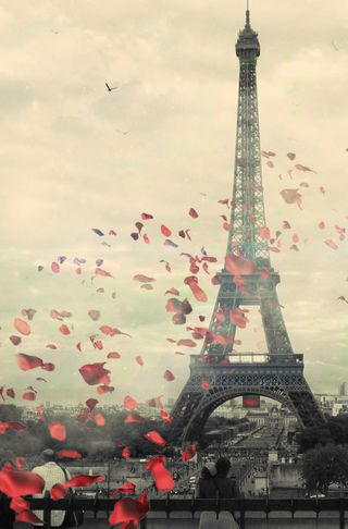 Обои на телефон эйфелева башня, тур, птицы, париж, люди, лепестки, tour eiffel paris, tour eiffel