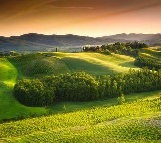 Обои на телефон холм, итальянские, италия, закат, долина, tuscany, tuscan