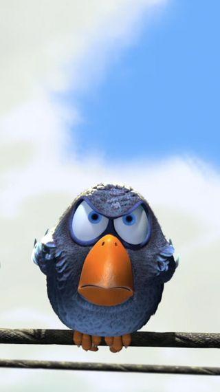Обои на телефон комедия, птицы, лицо, злые