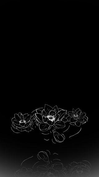 Обои на телефон лотус, черные, цветы, темные, белые, black n white lotus