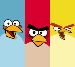 Обои на телефон злые, птицы
