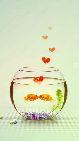 Обои на телефон рыба, сердце, любовь, золотые, gold fish love, gold fish
