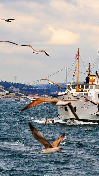 Обои на телефон стамбул, турецкие, istanbul turkey, istanbul steamship turkey, eminonu