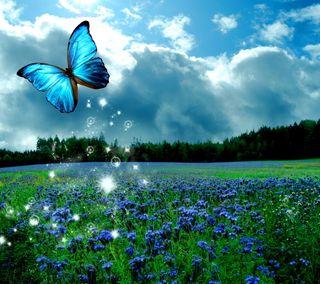 Обои на телефон сияние, цветы, светящиеся, луг, бабочки, butterfly glow