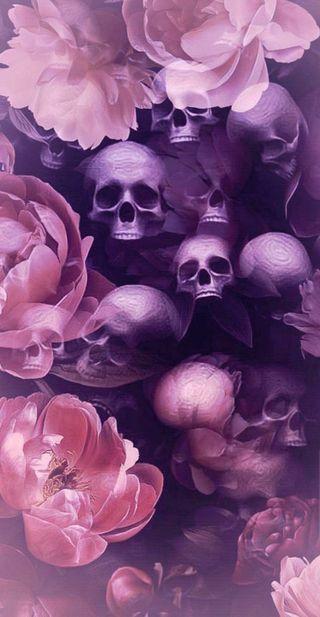 Обои на телефон пастельные, череп, цветы, фиолетовые, розы, розовые, растения