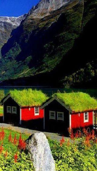 Обои на телефон природа, крутые, дом, kktharshan89, cool nature house, cool house