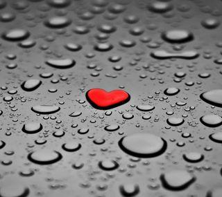 Обои на телефон капли, сердце, любовь, красые, love